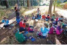 Nature (przyroda;)) / Nature in kindergarten, nursery school. How to be creative teacher;)
