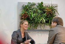 Planta 1ª Comercial | Compras | Admin