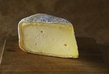 Cheeses of Sonoma County and their Makers / Celebrates Sonoma County's cheeses and the artisans who make them.