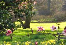 Wonderful Gardens of the world / Světoznámé zahrady / 1. Kew Gardens London 2. Keukenhof Gardens Holland