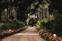 Photo Locations / Gabbinbar Homestead. One of Australia's most beautiful wedding destinations.