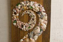 Seashells / by Christine Vogensen
