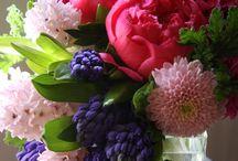 Mis flores preferidas / Jarrones de flores y flores en general