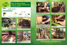 Garden Projects / Home Garden projects to DIY