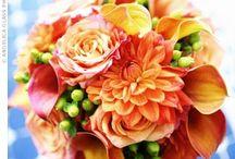 Mango Orange- Calla Lily/ Rose Wedding