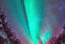 aureas borleais