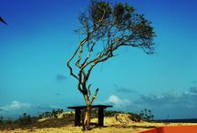 Mozambique / Photography by me