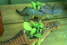 Plant Stall Ideas