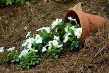 Spilled Flower Pot Ideas / In this board we share some brilliant Spilled Flower Pot Ideas. Click follow to get inspired.
