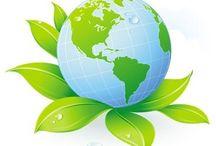 Eco & Bio / Vendita di prodotti ecologici, biodegradabili o provenienti da materia prime riciclate.