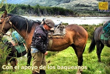 Trek Lago Brush to Paine / Amazing trekkking from Rio Serrano to Paine National Park in Patagonia
