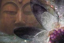Buddhism / Useful links