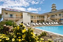 A Wave Inn / A Wave Inn is the perfect place to unwind and participate in all that Montauk has to offer.  You are just a short walk to the beautiful ocean beaches and the village of Montauk with a variety of shopping and restaurants.. / by Dune Resorts