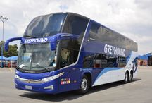 https://www.greyhound.co.za/why-do-our-fares-fluctuate/