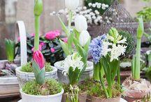 květinová inspirace