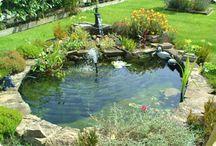 Garden ponds / Hagedammer
