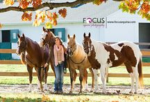 Photography - Seniors - Horse / Ideas for photographing seniors with horses.