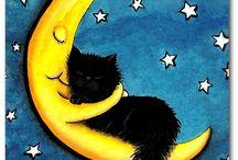 My love cat Kubko
