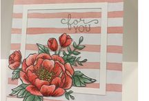 Stampin' Up Occasions & SAB 2016