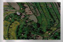 Quintinha para venda, só 70.000€ / Consulte mais informações neste link: http://www.abc-imobiliaria.pt/detail.php?prod=1431