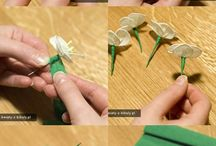 FLOWERS & PLANTS - DIY / Tissue, crepe or paper flowers that are beyond beautiful - I wish I had the talent to make!