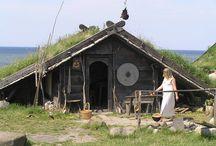 Viking Házak