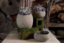 Succulents antique design