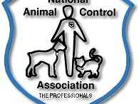 Animal Control / by Corpus Christi Animal Care Services