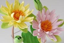 цветок лотосный