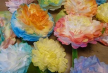 Coffee Filters, Doilies. Cupcake Papers, Straws. / by Pam Lunnon-Brown