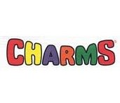 CHARMS / by Sue Dewland