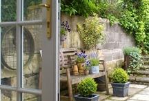 cool gardening stuff