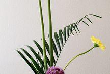 ikebana-a-like / Japanese StyleWriter flower arrangements