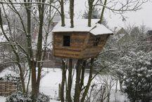 case sul albero