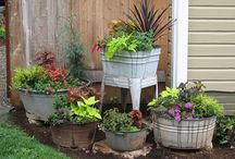 Gardening | Container & Patio / We only have a patio and need lots of ideas on container gardening and growing plants in small spaces. / by Ann @ Duct Tape and Denim