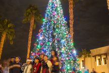 Christmas in the Coachella Valley