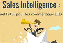 Sales Intelligence / Fait référence à l'ensemble des technologies, des applications et des pratiques relatives à la collecte, l'intégration, l'analyse et la présentation des données professionnelles et comportementales  sur les prospects et les clients