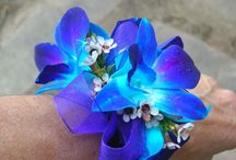 Prom corsages & boutiners