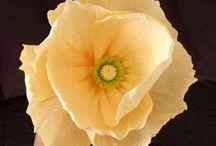 Květy z papíru