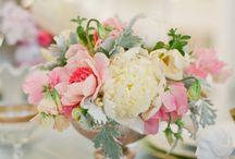 オハナ flowers / キレイなお花  beautiful flowers