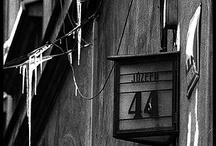 Number 44