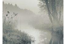 Feeling the Mist / by Sharla Shults