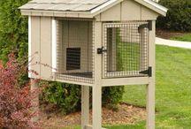 cabane pour petits animaux