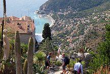 Notre Provence Côte d'Azur