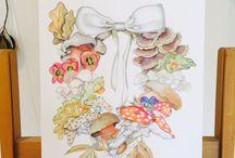 MindfulDrawing (www.mindfuldrawing.com) / Paula Kuitenbrouwer's birds, butterflies, botany, fish and beautiful nature  / by Arts Books Crafts