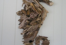 Driftwood and Sea Shells / by Windy Beach Girl