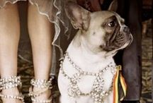 Wedding 06/17 photography