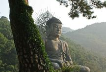 Buddah / Picture