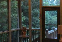 Screen Porch/Patio / by Kate Hagan