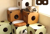 cats houses diy